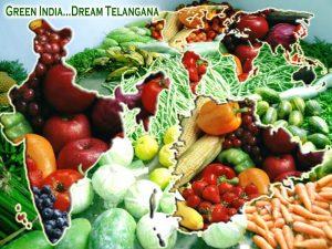 Vegetation of Telangana