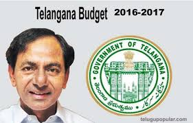 Main Features Of Budgets Of Telangna